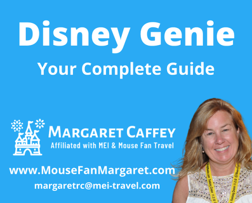 Everything You Need To Know About Disney Genie